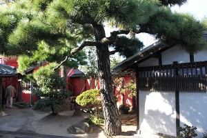 Quartier Hiketa, Higashi, Kagawa