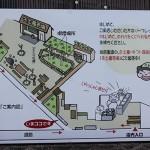 Carte sanuki udon