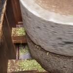 La poudre de sansho obtenue une fois le sansho moulu.